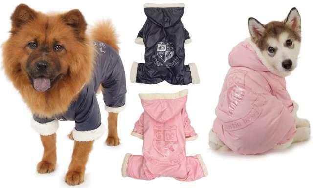 GlamDog.Ru - Интернет-магазин элитной одежды, аксессуаров и сумок ... 52dfe77a016