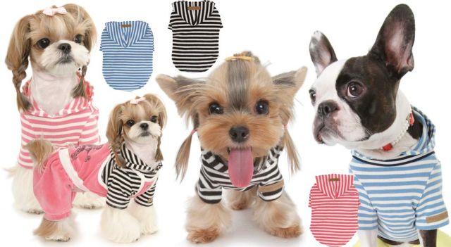 Товары для собак волгоград